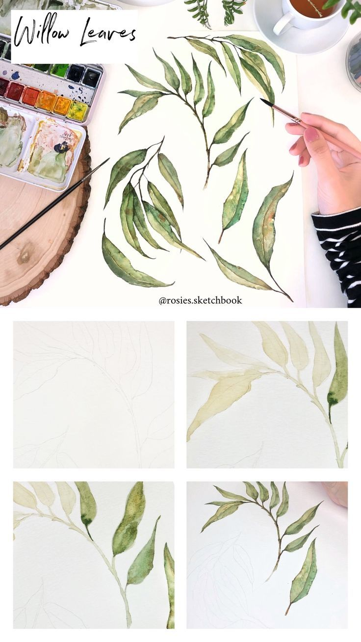 A Mini Tutorial Of A Willow Leaf Painting Using Watercolours With