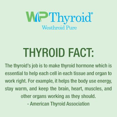 117 best thyroid 101 images on pinterest | thyroid disease, Human Body