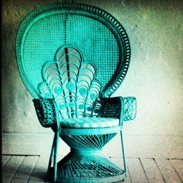 Vintage peacock chair. I'd like to sit here on a daily basis.