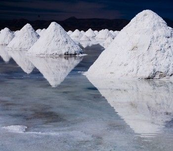 1 Day Salt Flats Tour - Standard Plus (Budget)