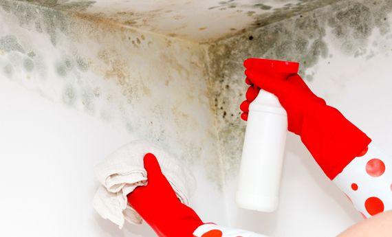Come eliminare l'umidità in modo naturale | Case da incubo