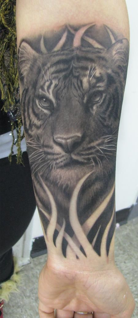Steve Wimmer - Realistic Black and Gray Tiger