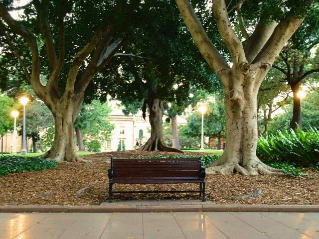nostalgic time.- Hyde Park in Sydney