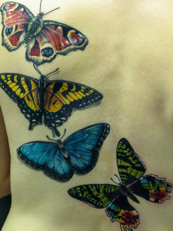 17 best images about butterflies n such on pinterest butterfly tattoo designs tattoo. Black Bedroom Furniture Sets. Home Design Ideas