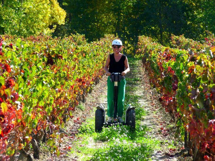 Precioso día de otoño en la Rioja