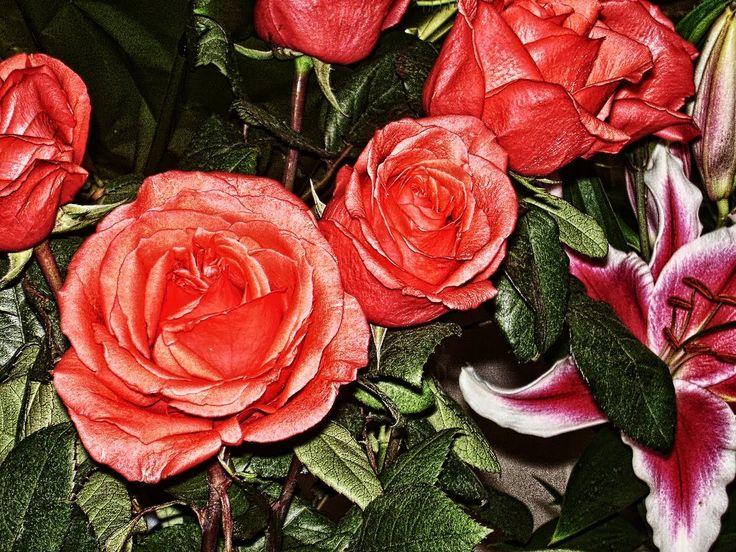 Футаж цветочный.