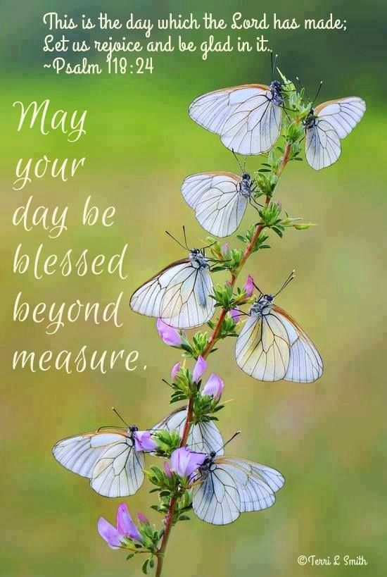 """""""This is the day that the Lord has made; let us rejoice and be glad in it."""" ~Psalm 118:24 May your day be blessed beyond measure. By: Terri Smith (Stormy) Created: 3/20/2014"""