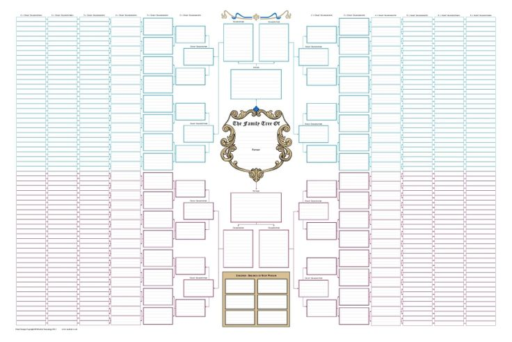 Blank charts are pre-printed with boxes for you to write-in names and other details. They are an attractive and inexpensive way of showing your family tree.