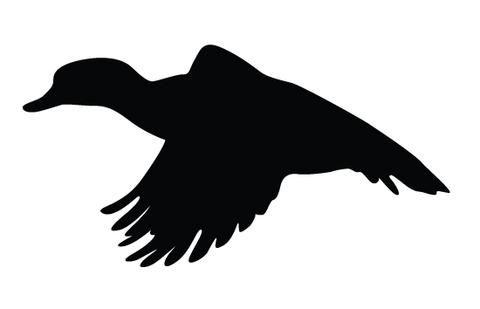 Duck flying silhouette vector