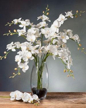 White Artificial Phalaenopsis Orchid Stems   Faux Single Plant Stem Decor