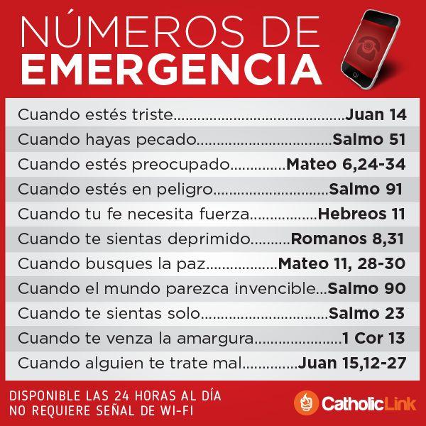 Biblioteca de Catholic-Link - Números de emergencia en las Sagradas Escrituras
