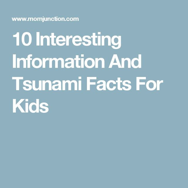 10 Interesting Information And Tsunami Facts For Kids