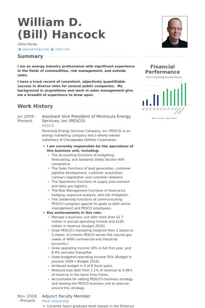 assistant vice president - grove energy Resume Example