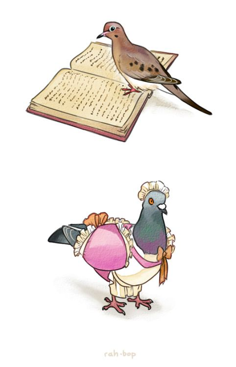 rah-bop:  Hatoful Boyfriend is a precious treasure.