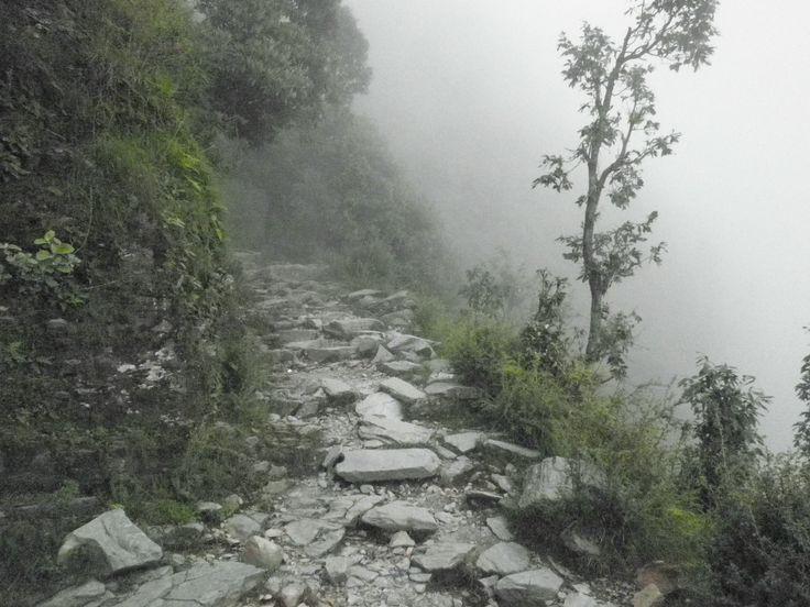 Triund Trek in Himalayas, Dharamsala India #PinOfTheDay trekking,himanchal,india,mountains,hills,view,greenery,adventure,nature