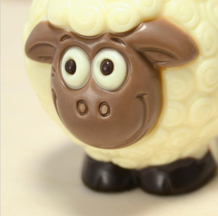 ChocoSheep White
