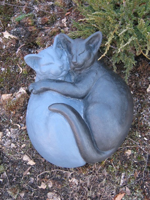 free kittens in ohio