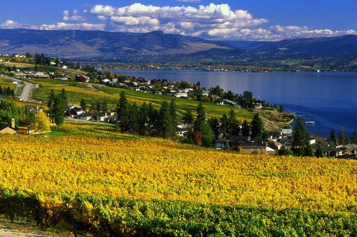 Vote - Okanagan Valley, British Columbia - Best Wine Region to Visit Nominee: 2014 10Best Readers' Choice Travel Awards