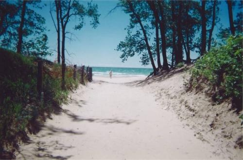 Picton Sandbanks. I love going here at least once every summer.
