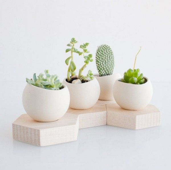 50 Unique Pots & Planters You Can Buy Right Now