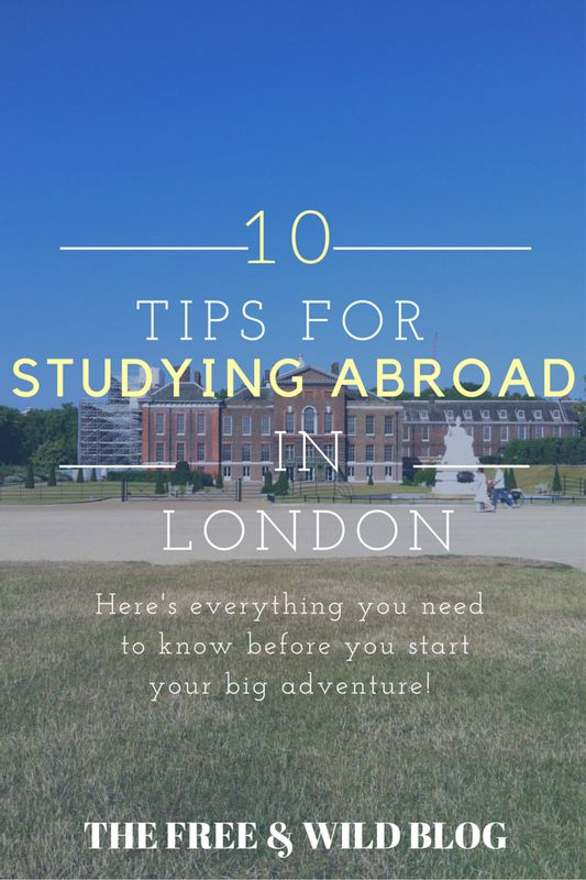 Best colleges for studying abroad - Business Insider