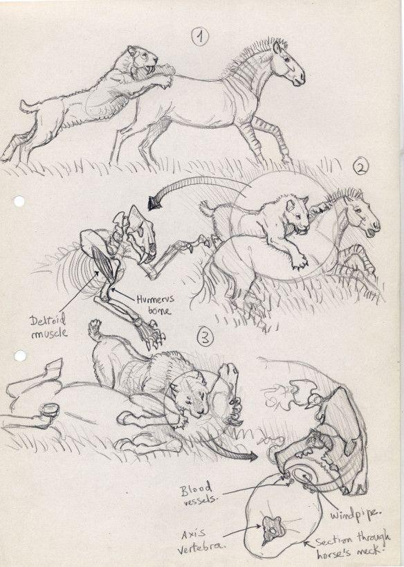 Sabertooth diaries 1: excavating old sketches   chasing sabretooths