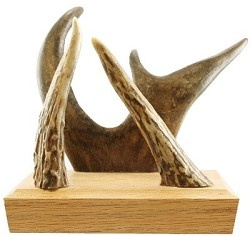 Mail holder crafted out of wood and genuine deer antlers.