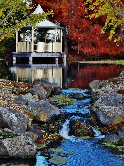 Autumn in S.W. Victoria, Australia. Photo: Suzanne Miller