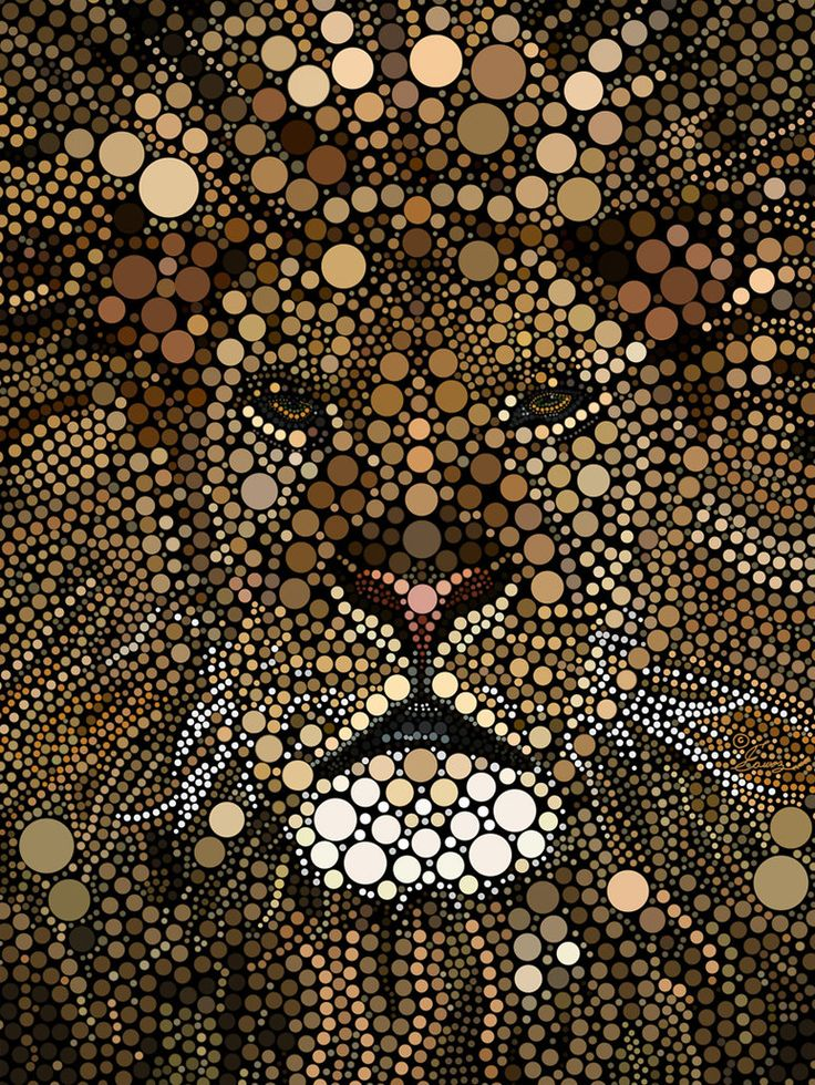 The lion by ~alraheef on deviantART