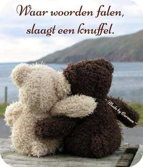 Waar woorden falen, slaagt een knuffel. - Where words fail, a hug does the trick. (Kind of a loose translation.)