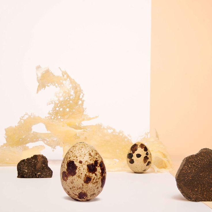 we love truffle! the-wonders-taste-by-francesca-fattori-3