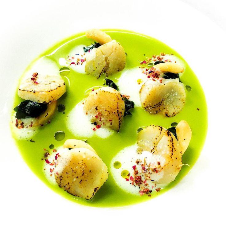 🇮🇹 Insalata di cape santa marinate sotto socco d'arancio con arancie e nashi selvatici, bietle in crema fredda leggera di polpa e foglie di finocchio ed arancie, su spuma d'infusione con panchetta , spezie miste rosse :) 🇬🇧 Glilled scallops with orenge, Swiss chard, wild pear salad sarced with cold fennel and orenge soup, put on the red spice with a panchetta bacon-scented form :) 🇯🇵 オレンジジュースでマリネしたホタテとオレンジ、山ナシ、ビエトラのサラダ仕立、パンチェッタの香りの泡と赤いミックススパイス、冷たいフェンネルスープと一緒に :) #cucinaitaliana…