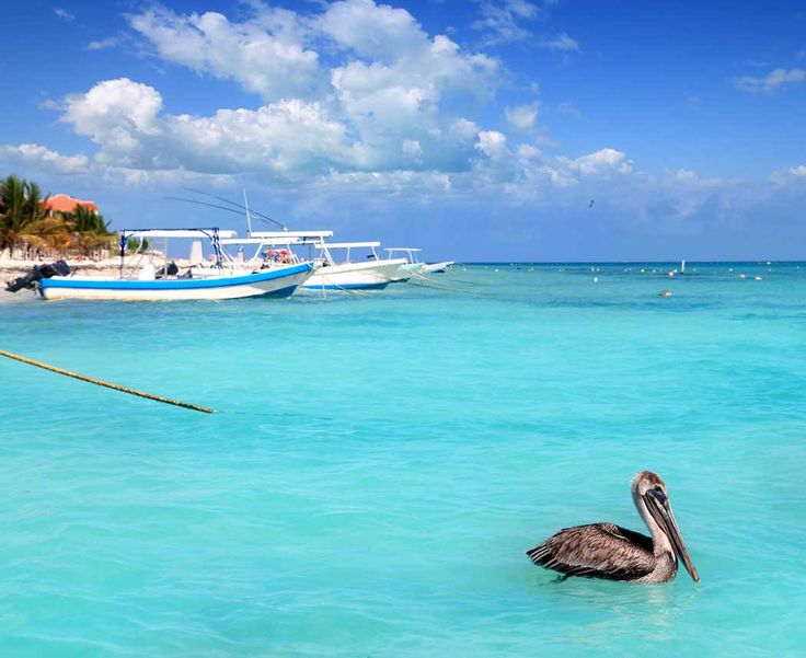 What Makes Puerto Morelos Unique Puerto Morelos is one of the best kept secrets in the Yucatan. Anyone who happens into this
