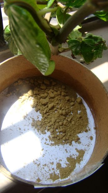 #Vega #Herbal #Heena #Powder #Review #price and details on the blog #swatch