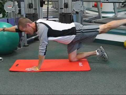 http://www.inspiredjourneyfitness.com.  John Chase, Bolingbrook Personal Trainer, shows you 5 core stability exercises you can do using only your own bodyweight and a stability ball.