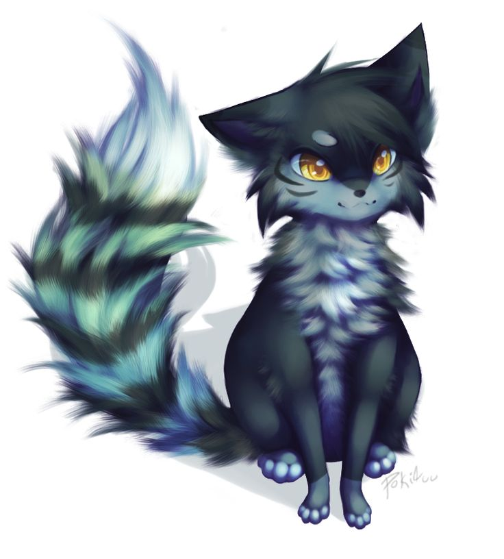 Amazing Warrior Anime Adorable Dog - 630a927a086d5e3b5cb9d35738db077b--cartoon-sketches-warrior-cats  Graphic_835847  .jpg