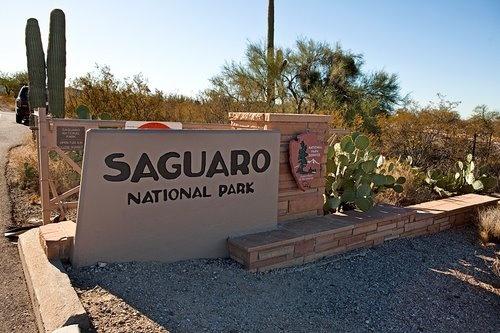 Saguaro National Park...Tucson, Arizona