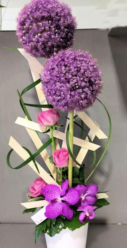 allium orchidees wanda et roses
