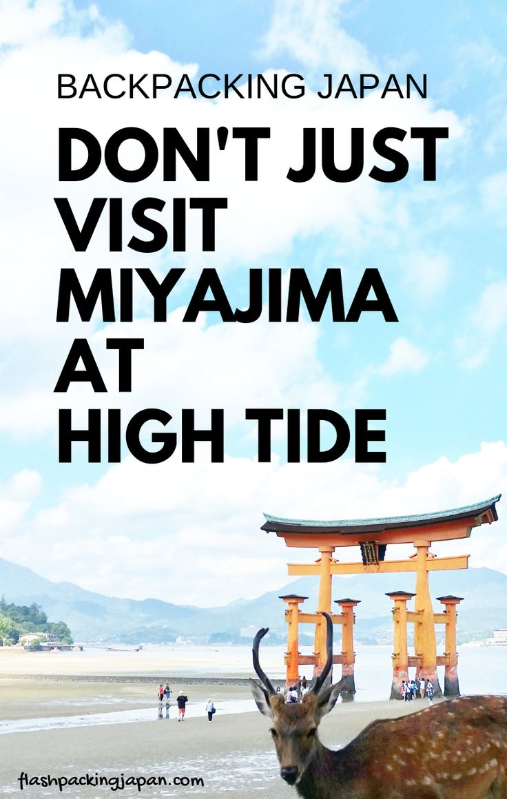 Travel Japan. Travel ideas for things to do in Miyajima island as day trip from …