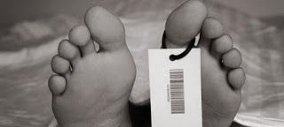 ΣΥΓΓΡΑΦΗ ΚΑΙ ΠΕΝΑ ΑΠΟ ΤΗΝ ΓΕΩΡΓΙΑ ΚΑΤΣΙΩΡΑ: Μας Κρέμασαν Ταμπέλες...Με Κανελί Φόντο!