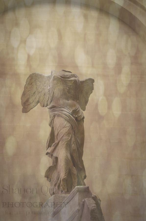shanonquinnphotography.com Le Louvre Paris