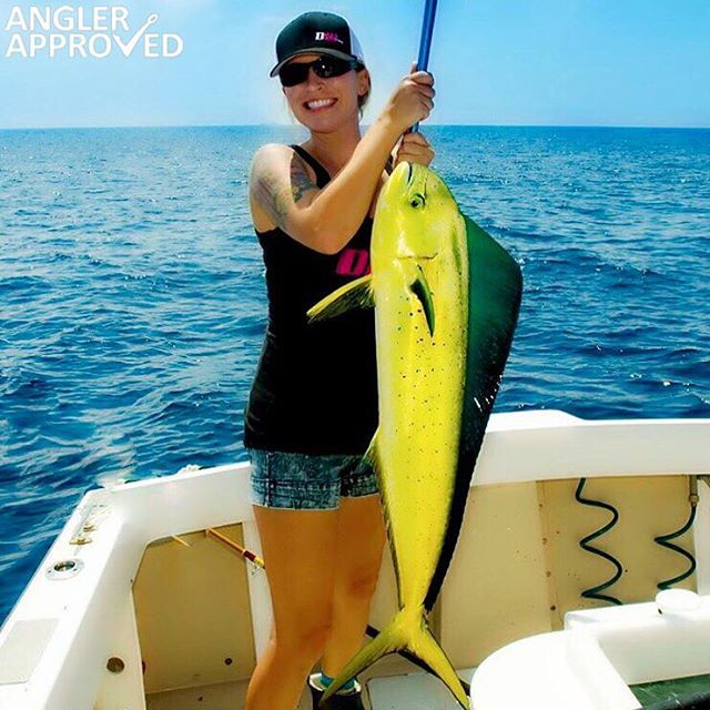 Amazing green coloring on this mahi!  @briezziee #APPROVED #AnglerApproved #AreYouApproved #CatchFishGetApproved #MahiMahi #Dorado #Fishing #SaltwaterFishing