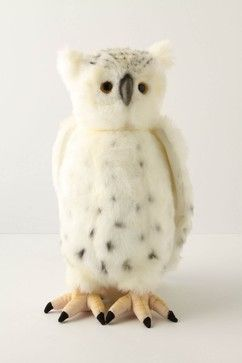 Great White Owl | Great White Owl eclectic kids toys
