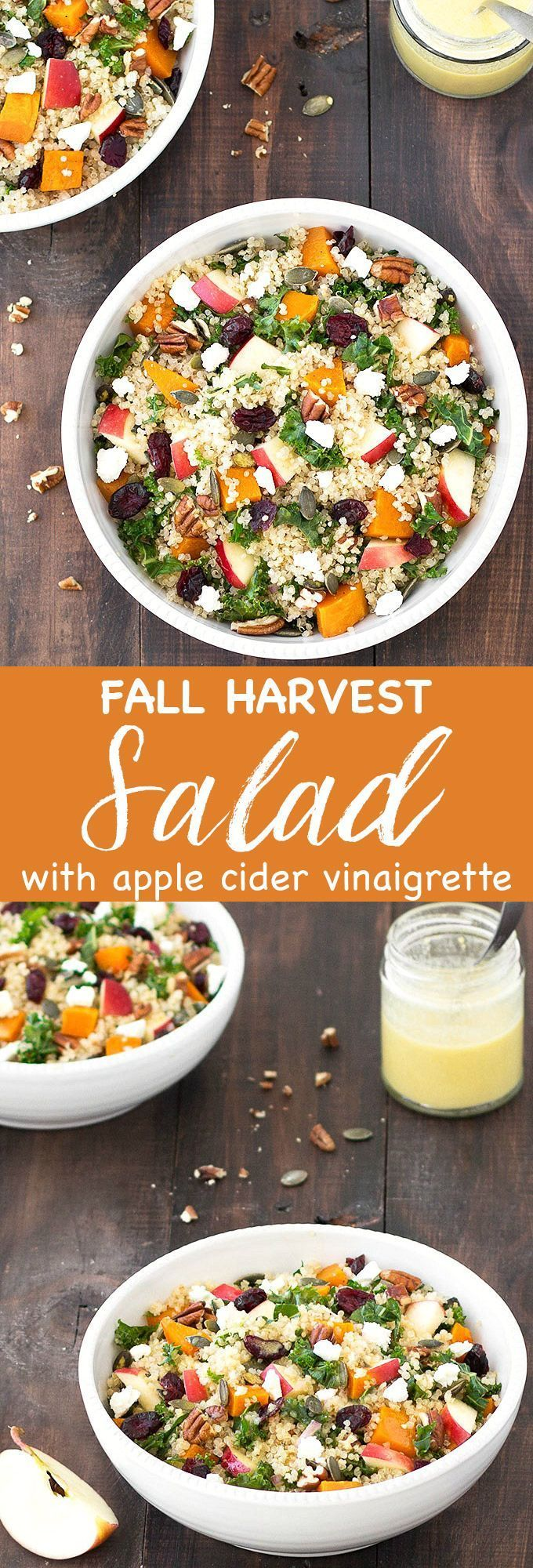 This fall harvest salad with apple cider vinaigrette is comforting, filling, colorful, and tastes absolutely amazing! It combines so many great textures and autumn flavors: roasted butternut squash, crunchy pumpkin seeds and pecans, crumbled feta cheese,