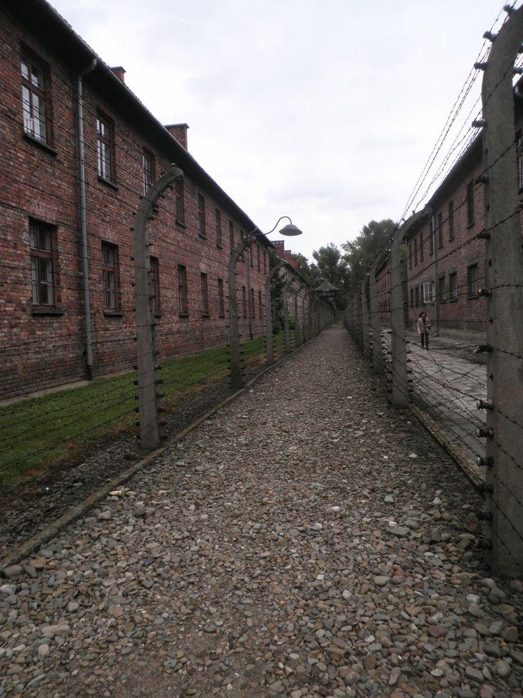Fotografía: Mayca Blasco- Auschwitz-Birkenau