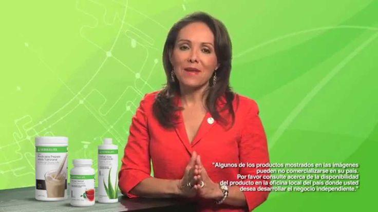 ¿Qué son fitonutrientes, fibra y sábila?