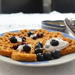 Amaranth low-cal waffels with blueberry cottage cheese and jam
