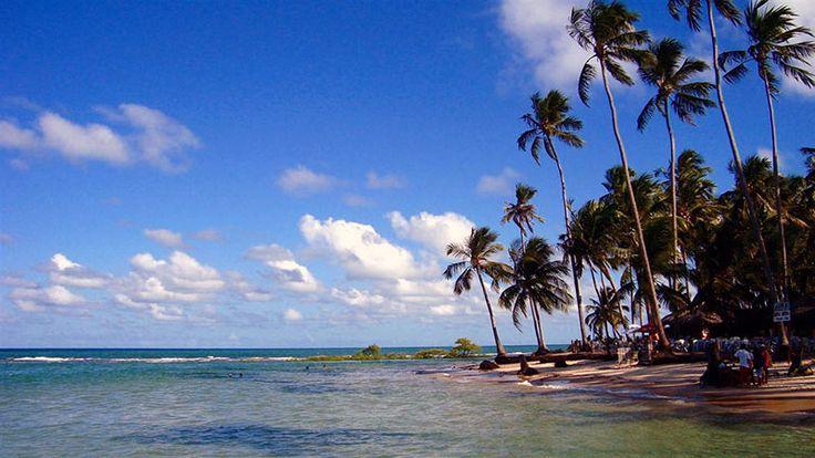 As águas calmas e mornas da Praia dos Caneiros - Pernabuco
