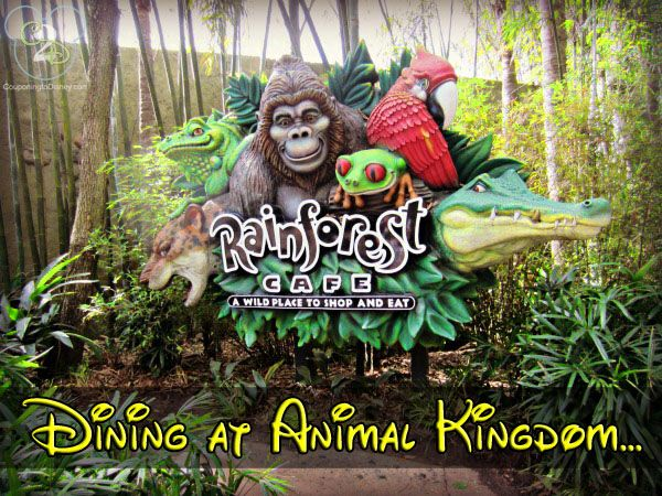 Animal Kingdom has a Rainforest Cafe if you are looking for a fun place to eat