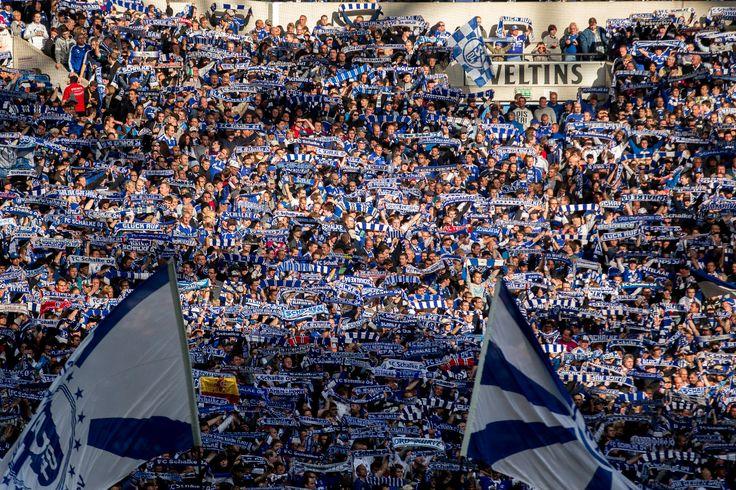 @Schalke #9ine